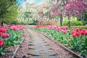 Ostern ist, wenn Hoffnung blüht